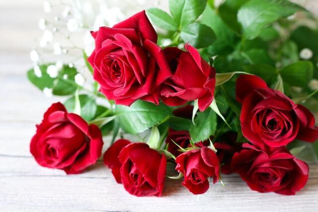 メリアルームメン バラの花プレゼント